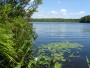 Lake Lacawac is a 52 acre galacial lake and a National Natural Landmark