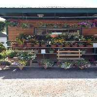 Cavages' Country Farm Market