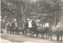 Wayne County Horse Drawn Carriage